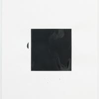 http://lailasvensgaard.com/files/dimgs/thumb_1x200_4_11_249.jpg